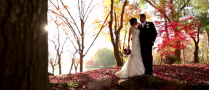 shinzen garden wedding fresno